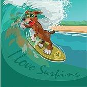 I love surfing
