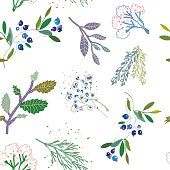 Herbal medicine plants seamless pattern