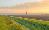 Wind turbine in a foggy field at sunrise