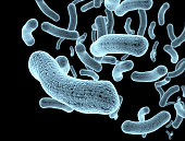Bacteria and bacterium cells medical illustration of bacterial d