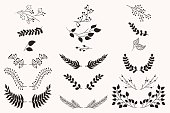 Set of vector vintage floral elements.
