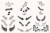 Set of vector vintage floral elements.
