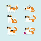 Set Of Cat Poses Vector Illustration
