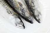 Frosen atlantic mackerel on white