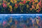 Dreamy Fall Colors