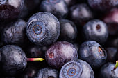 Juicy and fresh blueberries. Blueberry antioxidant. Concept for healthy eating and nutrition