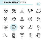 Human Anatomy - Pixel Perfect icons