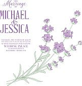 Invitation card with Lavender flowers