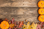Fall stock scenes
