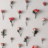 Colorful flowers pattern on white background. Flat lay. Minimal spring concept.