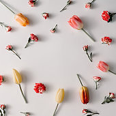 Creative minimal arrangement of colorful flowers. Spring concept. Flat lay.