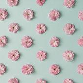 Pink flower pattern on blue pastel background. Minimal spring concept. Flat lay.