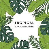 Frame made of hand drawn tropical palm, banana and monstera leaves. Engraving design. Botanical vector illustrations. Exotic jungle background.