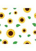 Sunflower with green leaves seamless pattern. Sunflowers on white background