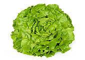 Butterhead lettuce front view over white