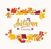 Autumn is coming banner with autumn leaves frame.