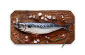 Fresh mackerel in ice on cutting board isolated