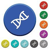 DNA molecule beveled buttons