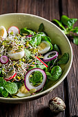 Slimming green salad with quail egg, radish and onion