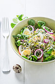 Homemade green salad with quail egg, radish and onion