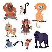 Different breads monkey character animal wild zoo ape chimpanzee vector illustration
