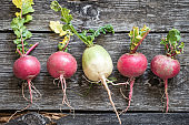 root vegetables turnips, radishes, beets on a wooden background