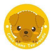 Dog Kid Club/toy poodle