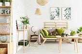 Cat on wooden sofa