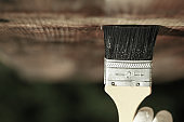 Paintbrush sliding over wooden ceiling surface