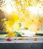 Autumn Background With Leaves On The Bench