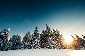 Winter Landscape At Sunrise