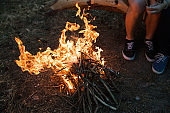 Bonfire warm tourism nature forest concept.