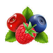 Ripe berries. Raspberry, blueberries and cherry icon. Vector illustration