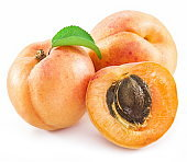 Apricots and its cross-section.