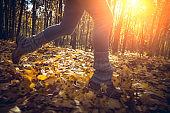 Woman jogging in autumn park