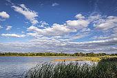 Lake seen from abandoned summer resort called Izumrudnoye in Chernobyl Exclusion Zone, Ukraine
