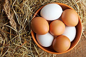 Chicken eggs in a bow