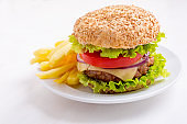 Delicious  Hamburger on Whole Wheat Bun with French Fries