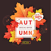 Autumn sale flyer template with colorful maple leaves