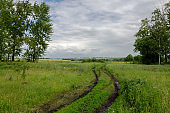 Cloudy countryside landscape with ground road after rain
