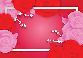 Rose flowers and frame on pink background with copy space