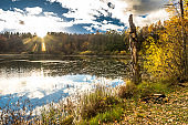 Scenery in autumn nature over lake, fall scenic landscape at sunset over forest