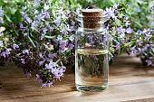 A bottle of thymus serpyllum (Breckland thyme) essential oil