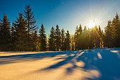 Sunny winter mountain - Ukraine