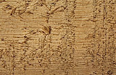 raw wood with grain in evidence