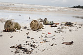 Enviromental pollution - garbage on a beach.