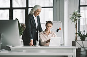 young businesswoman and her boss working with laptop computer in office
