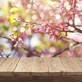 Empty wooden deck table over blooming tree bokeh background for product montage display. Spring concept
