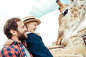 family feeding giraffe in zoo