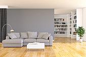 Bookshelf and sofa in living room